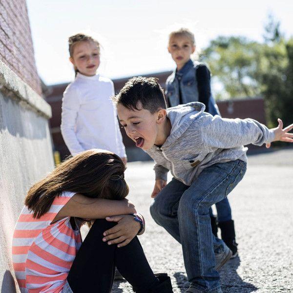 definicion acoso escolar