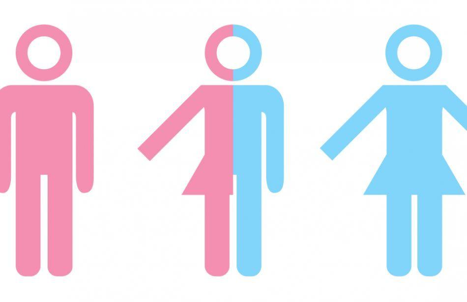 identidad sexual y de genero