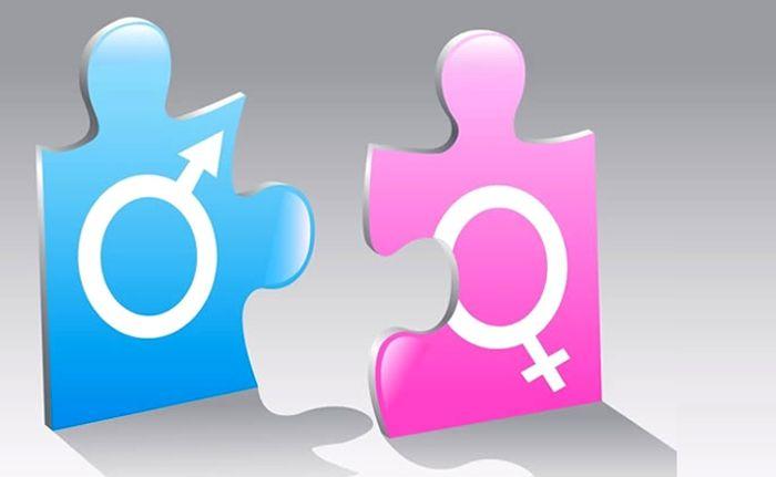 identidad de genero y sexualidad