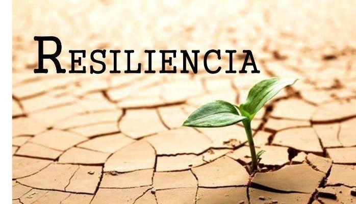 resiliencia psicologia resiliencia humana qué es resiliencia